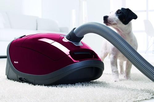 Aspirateur Miele - Complete C3 Cat&Dog PowerLine
