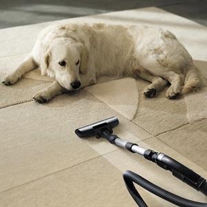 Pet dog hair vacuum cleaner